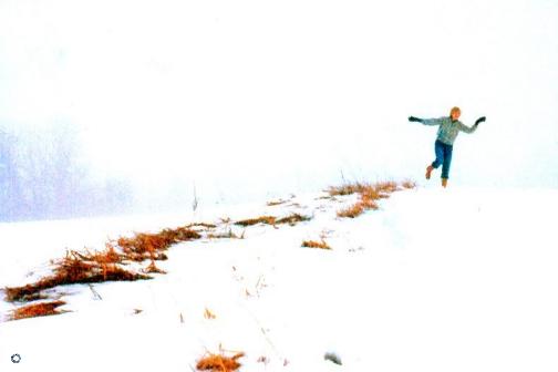G19-5 Snow Dancer, 1978