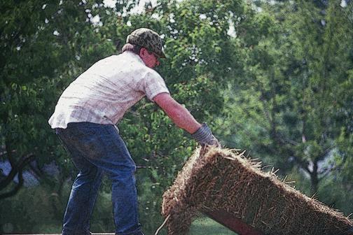 On a Wisconsin Farm (1986)
