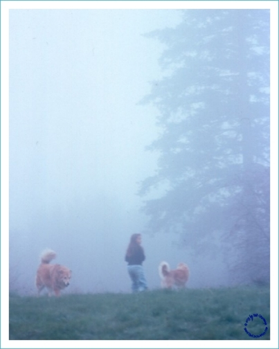 G17-2 Girl, Dogs, Fog, 1997