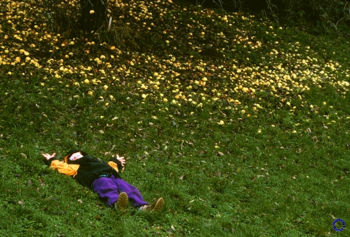 G03-6 Boy & Apples, 1997