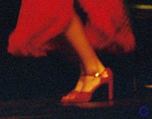 G24-2 Red Skirt, 2003