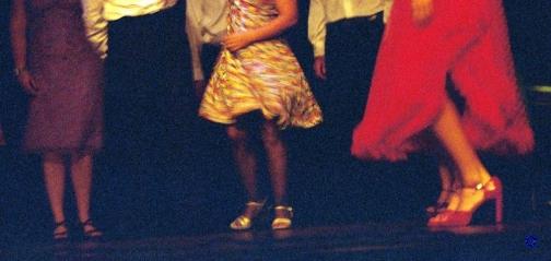 G24-3 Skirts, 2003