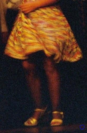 G24-1 Yellow Skirt, 2003