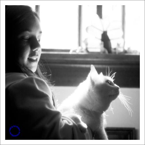 G07-5 White Cat, 2004