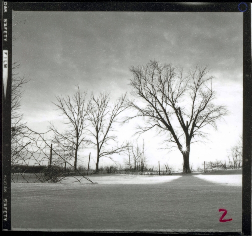 G11-6 Maples (Contact), 1968