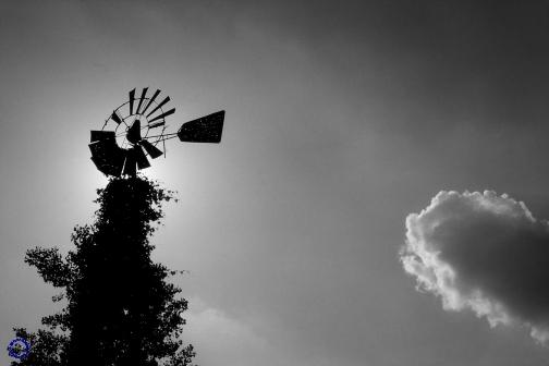 G22-3  Windmill (B/W), 2002
