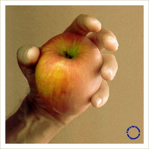 G05-4 Apple in Hand (Tan), 2003