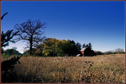 Farm & Village (2007, 2011)