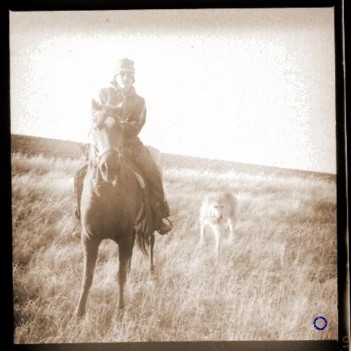 G23-5 Ernie, Horse, Dog, 1984