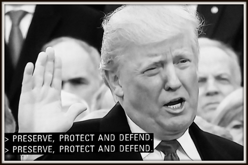 Preserve, Protect and Defend (2017)